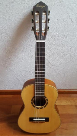 guitare ortega r121