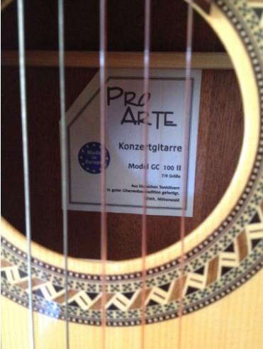 guitare pro arte