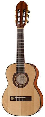 gewa pro arte guitare 14